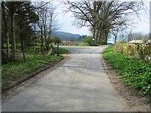 NO2407 : Path on Falkland Estate by Bill Kasman