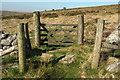 SX7574 : Gate, Halshanger Common by Derek Harper