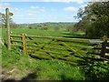 SO4003 : Footpath to Llandenny by Philip Halling