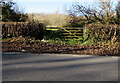 ST1572 : Wooden gate at the edge of woodland north of Dinas Powys by Jaggery