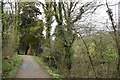SX0046 : Path in the Lost Valley, Heligan Estate by Trevor Harris