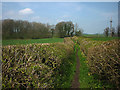 SD5386 : Hedge-lined footpath approaching Eskrigg Wood by Karl and Ali