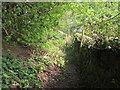 SE1439 : Overgrown footpath near Hope Farm by Stephen Craven