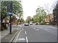 TQ2783 : Avenue Road (B525) by JThomas