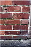 SP4441 : Benchmark on #239 Warwick Road by Roger Templeman