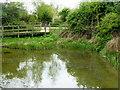 TQ8068 : Sharp's Green Pond, Riverside Country Park, near Rainham by pam fray