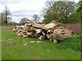 SP8881 : Logs on a footpath near Weekley church by Richard Humphrey