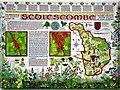 TQ7718 : Display panel commemorating centenary of Sedlescombe parish by Patrick Roper