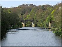 NZ2742 : Durham: upstream from Framwellgate Bridge by John Sutton