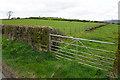 NZ0860 : Field entrance on Mickley Moor by Bill Boaden