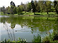 ST6964 : Tranquil lake by Neil Owen