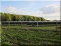 TL3246 : Solar Farm, Vine Farm by Hugh Venables