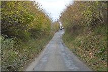 SX5756 : Narrow Devon Lane by N Chadwick