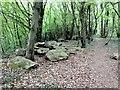 TQ7661 : Sarsen Stones, Walderslade Woods by Chris Whippet