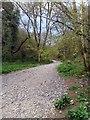ST4854 : Black Rock Walk by PAUL FARMER
