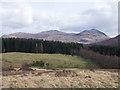 NN3480 : Coniferous plantation in Glen Spean by Trevor Littlewood
