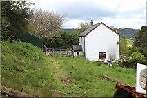 SO2413 : House and hillside meadow, Twyn Wenallt by M J Roscoe