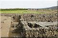 NY9864 : Corbridge Roman Site by Bill Boaden