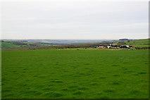 NZ0859 : Field above Hedley Park Farm by Bill Boaden