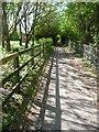 SU6806 : Footpath beside Crookhorn Lane by Chris Gunns