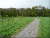 SE1025 : New footpath from Beacon Hill to Shibden hall, Halifax by Humphrey Bolton