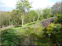 SE1025 : Junction of paths, Cunnery Wood Nature Reserve, Halifax by Humphrey Bolton