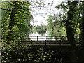 SP6339 : Bridge and lake, Biddlesden Park by Jonathan Thacker