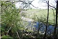 NS3922 : River Ayr by Richard Webb