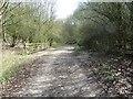 SU4883 : Bend in the Path by Bill Nicholls