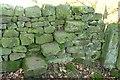 SE2548 : Stone step stile by East Beck by Derek Harper