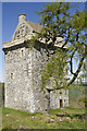 NT5621 : The Peel Tower on Minto Hill by Malcolm Neal