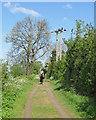 TL4265 : A rider on Gun's Lane by John Sutton