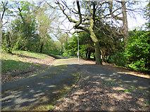 NS3174 : Birkmyre Park, Port Glasgowpark by Thomas Nugent