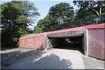 NS5574 : Underpass, Milngavie by Richard Webb
