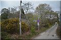 SW7839 : Cornwall : Tarrandean Lane by Lewis Clarke