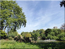 TQ2979 : St James's Park by PAUL FARMER