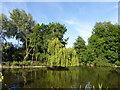 TQ2979 : St James's Park by PAUL FARMER