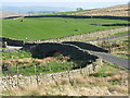 SD1895 : Crosbythwaite Bridge by G Laird
