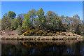 NN1378 : Looking across the Caledonian Canal near Torcastle by Chris Heaton
