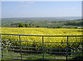 ST5766 : Field over the Chew Valley by Neil Owen