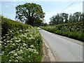 SO5669 : Country road to the north of Easton Villa by Philip Halling