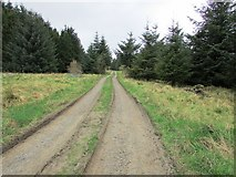 NO2005 : Track past Harperleas Reservoir, Lomond Hills by Bill Kasman
