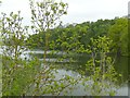 SK3721 : Staunton Harold Reservoir by Graham Hogg