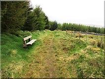NO2004 : Wooden bench on West Feal path, Lomond Hills by Bill Kasman