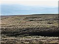 NS9400 : Sheep in moorland on Gana Hill by wrobison