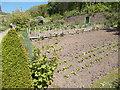 SS2424 : Walled Vegetable Garden - Hartland Abbey by Betty Longbottom