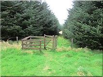 NO2004 : Gate on path to West Feal farm, Lomond Hills by Bill Kasman