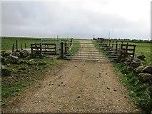 NO2003 : Gate on path to West Feal farm, Lomond Hills by Bill Kasman