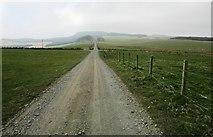 NO2003 : Road to West Feal farm, Lomond Hills by Bill Kasman