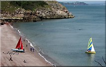 SX9265 : Sailing at Oddicombe Beach by Derek Harper